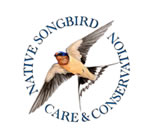 Native Songbird Care & Conservation