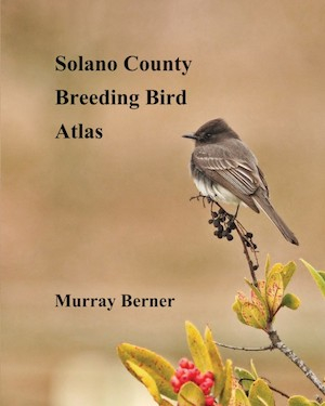Field Guide to Breeding Birds of Solano County